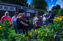 The GoWell Panel members in a community garden